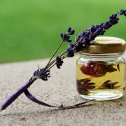 essential oils that can prevent head lice