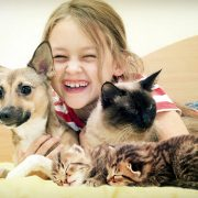 young girl hugs kittens and dog